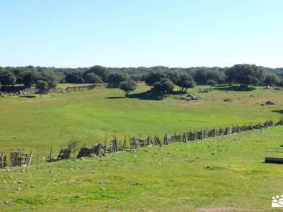 Cocido Montañero-Fresnedillas de la Oliva;tejo milenario parque natural barranco del río dulce gra